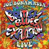 Joe Bonamassa - Boogie With Stu