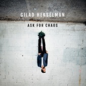 Gilad Hekselman - It Will Get Better