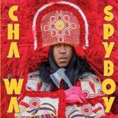 Spyboy