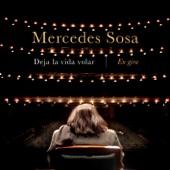 Mercedes Sosa - Piedra Y Camino