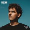 IJskoud - Nielson
