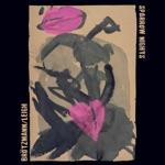 Peter Brötzmann & Heather Leigh - Summer Rain