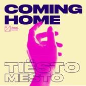 Tiësto - Coming Home