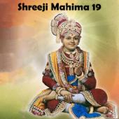 Shreeji Mahima 19