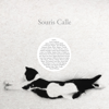 Souris Calle - Sophie Calle