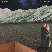 The Pollies - Fell In Love