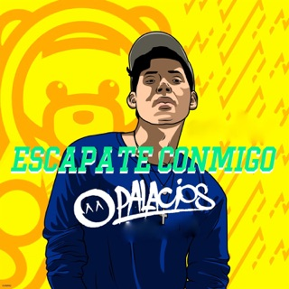 X (Moombahton Remix) - Single by DJ Palacios on Apple Music