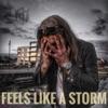 Feels Like a Storm - Single