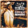 Lou Bega - Mambo No. 5 (a Little Bit of...) grafismos
