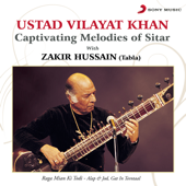 Captivating Melodies of Sitar