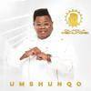 Umshunqo - Dladla Mshunqisi