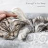 Purring Cat for Sleep Single