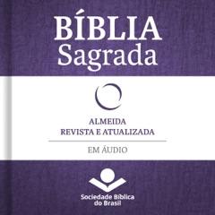 Bíblia Sagrada Almeida Revista e Atualizada em áudio [Holy Bible Almeida Revised and Updated Audio]: Antigo e Novo Testamento (Unabridged)