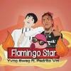 Yvng Swag - Flamingo Star feat Pedrito Vm Song Lyrics
