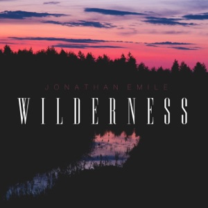 Wilderness - Single Mp3 Download
