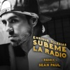 SÚBEME LA RADIO (REMIX) - Single, Enrique Iglesias & Sean Paul