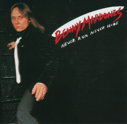 Art for Into The Night by Benny Mardones