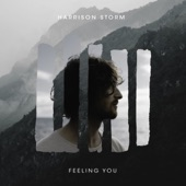 Harrison Storm - Feeling You