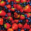 STRAWBERRY TIMES -Berry Best of HiGE- ジャケット写真