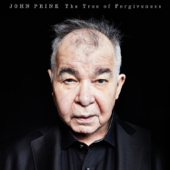 When I Get to Heaven - John Prine