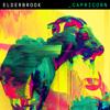 Elderbrook - Capricorn artwork