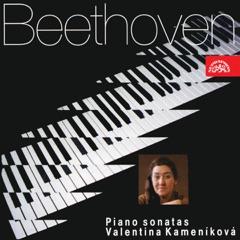 "Piano Sonata No. 14 in C-Sharp Minor, Op. 27 No. 2 ""Moonlight"": I. Adagio sostenuto"
