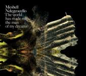 Me'Shell NdegéOcello - Michelle Johnson