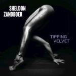 Sheldon Zandboer - Snakes and Liars