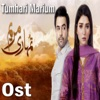 Tumhari Marium From Tumhari Marium Single