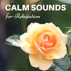 Calm Sounds for Relaxation - Gentle Songs to Revitalize, Music with Delicate Sounds of Nature