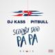 Dj Kass & Pitbull