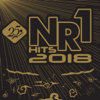NR1 Hits 2018 - Various Artists