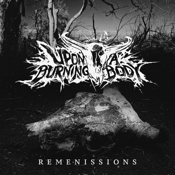 Remenissions - Single