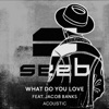 What Do You Love (feat. Jacob Banks) [Acoustic] - Single, Seeb