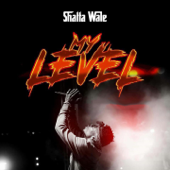 My Level-Shatta Wale