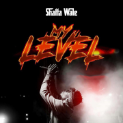 My Level - Shatta Wale - Shatta Wale