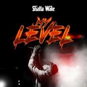 My Level - Shatta Wale - Shatta Wale