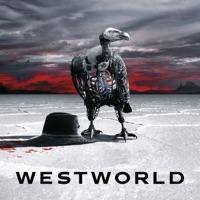 Télécharger Westworld, Saison 2 (VOST) - HBO Episode 114