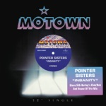 The Pointer Sisters - Insanity