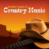 The Best Sounds of Country Music: Top of West Music, Acoustic Guitar, Wild Rhythms, Top Instrumental Music Collection