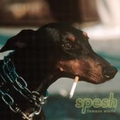 Spesh - Teflon