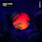 Flames - David Guetta & Sia mp3