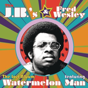 The J.B.'s & Fred Wesley - Alone Again (Naturally)