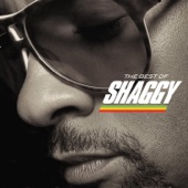 Shaggy - Big Up