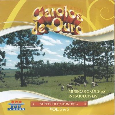 Músicas Gaúchas Inesquecíveis - Vol. 5 - Garotos de Ouro