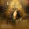Mannat Noor - Laung Laachi (Title Track)