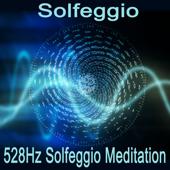 528Hz Solfeggio Meditation (Tibetan Singing Bowl 528Hz Meditation)