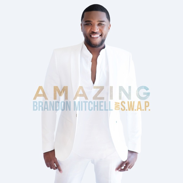 Brandon Mitchell & S.w.a.p. - Working For My Good (Feat. Lisa Knowles-Smith)