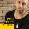 ואם תבואי אליי - The Idan Raichel Project