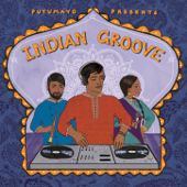 Putumayo Presents Indian Groove